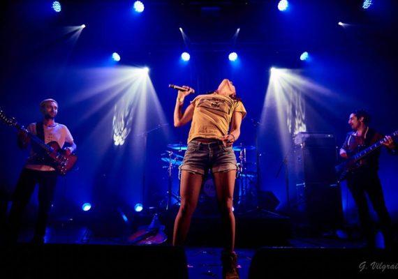Concert Sweet Olive